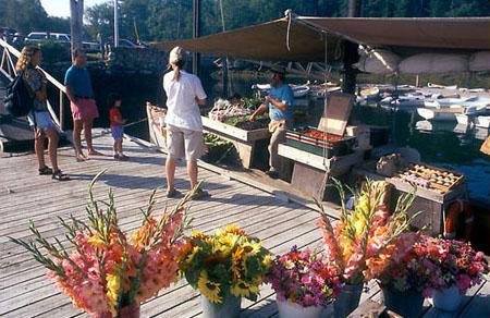 Maine Market Boat