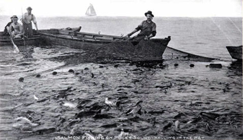 in the shallow waters of Puget Sound inlets during the 19th century