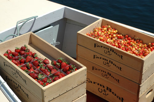 FarmBoat Berries